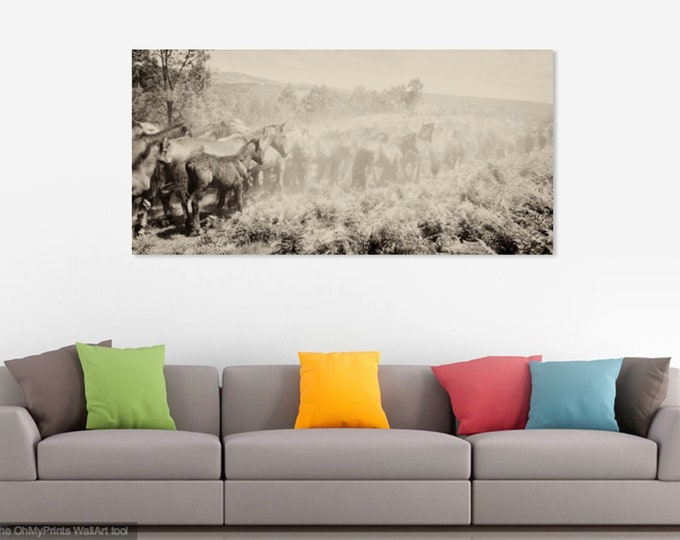 RAPA DAS BESTAS 3. Horse Print, Herd of Horses,  Black and White, Equine Print, Travel Photography, Wild Horses
