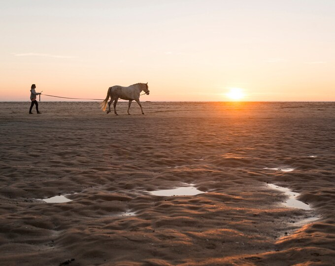 HORSE ON BEACH Print
