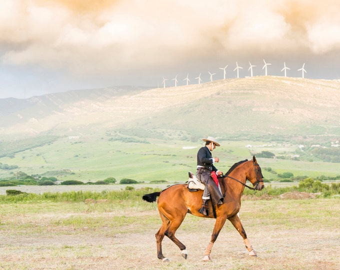 SPANISH HORSEMAN 3. Spanish Horse, Tarifa Picture, Equine Print, Photographic Print, Limited Edition Print, Wall Art