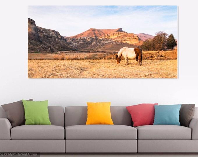 GOLDEN GATE PARK. South Africa Print, Landscape Print, Horse Photography, Limited Edition Print