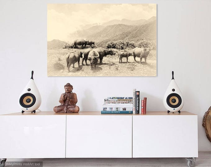VIETNAM STORIES 21. Vietnam Prints, Sapa Mountains, Water Buffalo, Travel Photography, Giclee Print, Limited Edition
