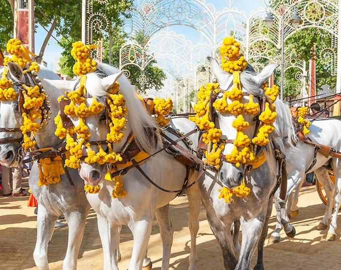 SPANISH HORSES PRINT