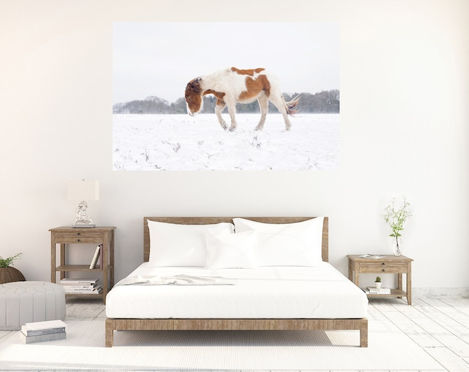 Journey In The Snow, Horse Prints, Equine Print, Extra Large Print, New Forest Pony, Winter Print, Horse In Snow, Animal Prints