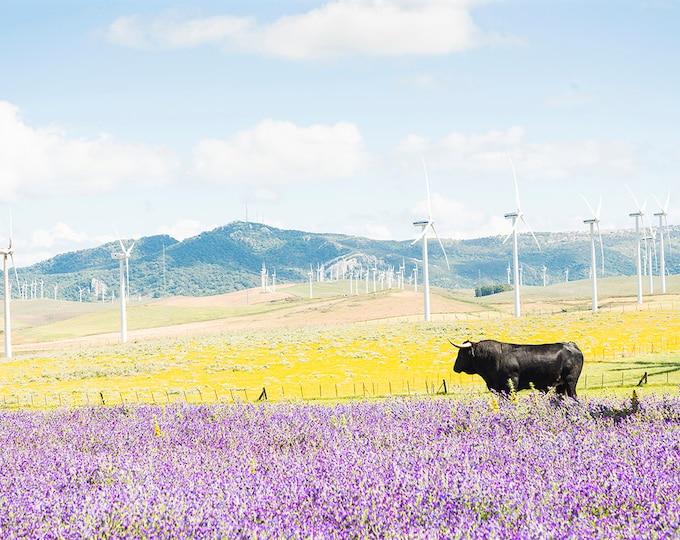 SPANSH LANDSCAPE PRINT, Cow Print