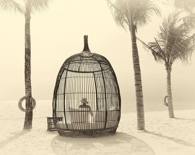 VIETNAM STORIES 14. Vietnam Prints, Beach Picture, Palm Trees, Travel Photography, Limited Edition Print, Photographic Print