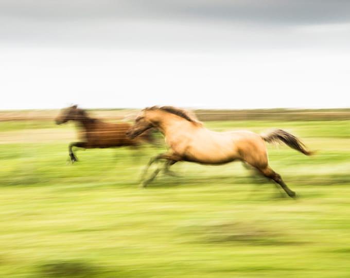 GALLOPING HORSES PRINT