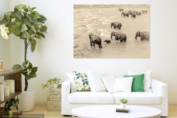 RIVER ELEPHANTS. Giclee Print, Sri Lanka, Elephants Print, Limited Edition, Photographic Print