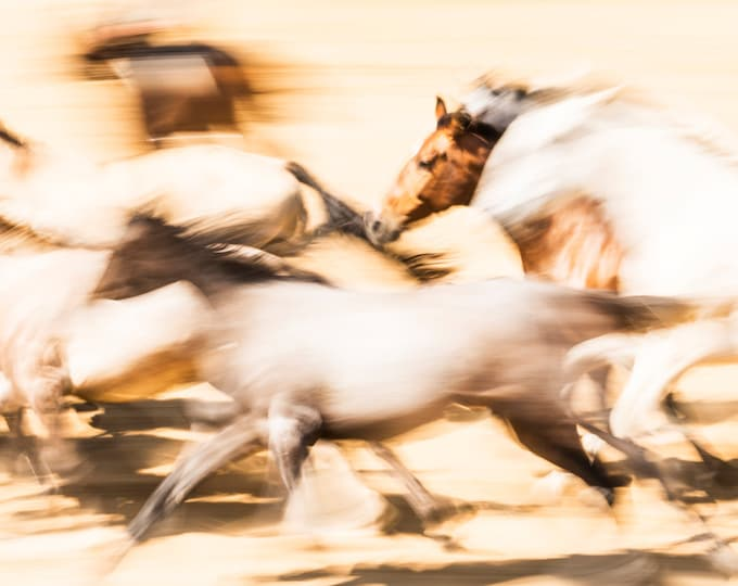 GALLOPING HORSES PRINT, Abstract Horse Print