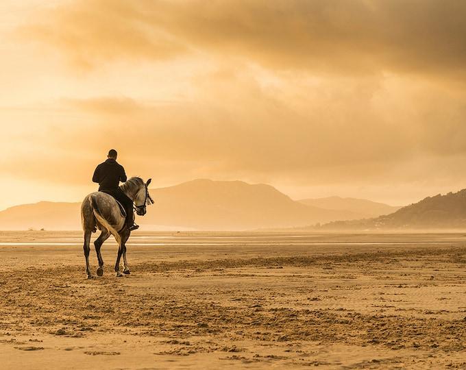 HORSE PRINT, Horse Wall Art