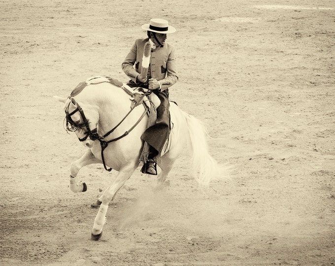 WHITE CHARGER 2. Horse Prints, Equine Prints, Spanish Prints, Monochrome Prints, Travel Prints, Large Prints