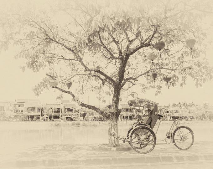 SEPIA TONED TREE Print