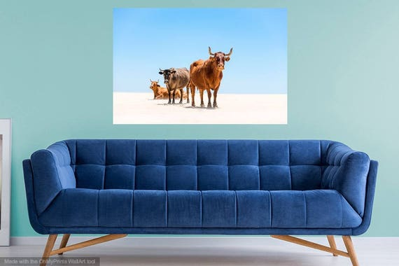 "Cow Print. "" Cows on Beach "", Cow Photography, Animal Prints, Tarifa Print, Wildlife Print, Wall Decor, Fine Art Photography"
