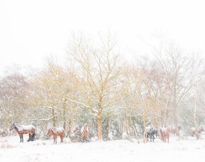 CHRISTMAS WINTER HORSE print