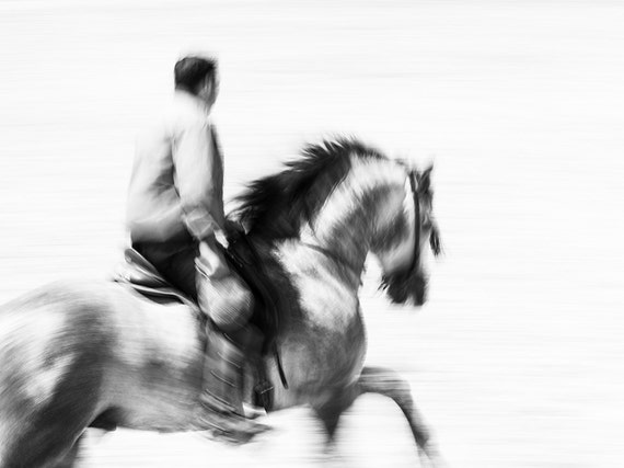 RIDING STRONG. galloping horse, spanish horse, black and white print, photographic print