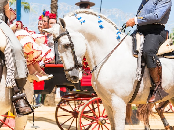 "Horse Prints, ""JEREZ HORSE FESTIVAL 1"",. Spanish Horses, Photographic Print, Travel Photography, White Horse Print"