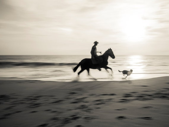 ZAHORA RIDER. Equine print, Galloping Horse, Spain, Horseriding Picture, Photographic Print
