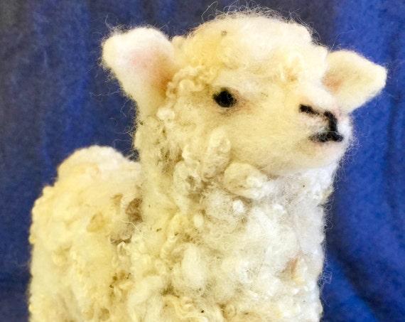 Needle felted sheep, needle felted nativity, needle felted Christmas,wool sheep, Waldorf doll, animal sculpture, felted farm animal