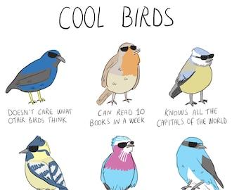 Cool Birds - A4 print