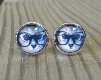 Cats with Glasses  - Glass Earrings on Stainless Iron.