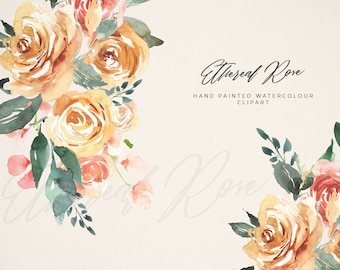Flower Watercolour Clipart, Hand Painted Graphics - Ethereal Rose