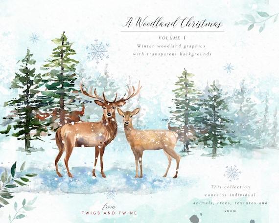 image 0 - Woodland Christmas