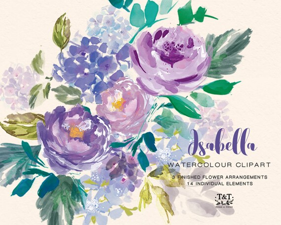 Purple Peonies Flower Clipart Isabella Perfect For Wedding Etsy