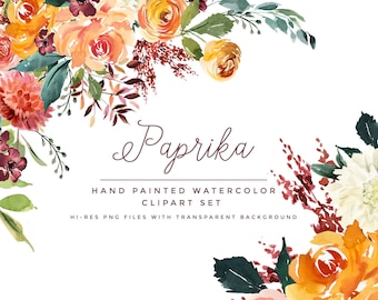 Watercolor Clipart Paprika. Hand Painted Watercolour Florals With Transparent Background.