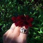 Ruby Rose Skull Candy Ring