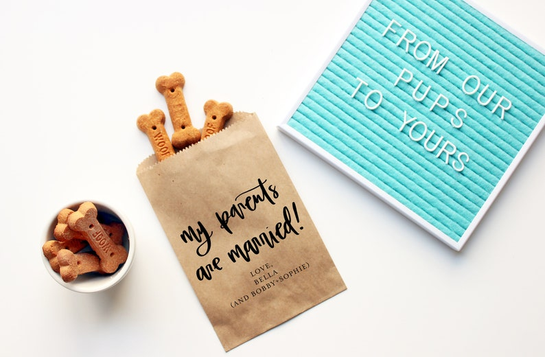 Wedding Favor Bags CAT treats bag Treat Yo Dog Personalized Wedding Favor Bags Dog Treat Favor Bag Thanks for Celebrating my Humans