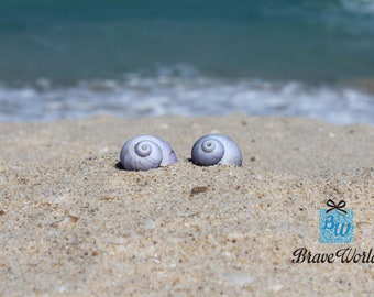 Blue Seashells Photo Print, Digital Download, Beach Wall Art, Sea shell Photo Print, Sea shell Photograph, Beach Theme Decor, Seaside