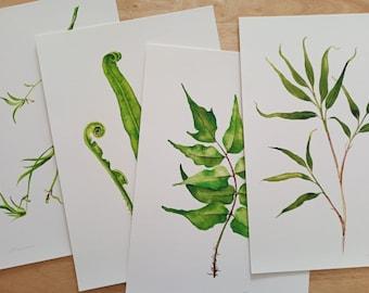 Botanical print set of 4 - Bamboo, spider plant, fern leaf and fronds