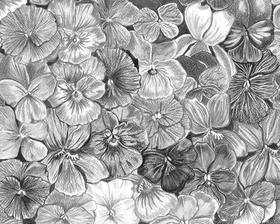 Fondo Flores Violetas Pintado Violetas Flores Dibujo Hecho A Etsy