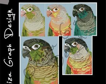 Green-cheeked conure  CROSS STITCH Pattern, CROCHET Graphghan Blanket Pattern