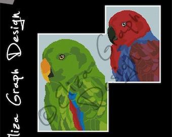 Eclectus parrot CROSS STITCH Pattern, CROCHET Graphghan Blanket Pattern