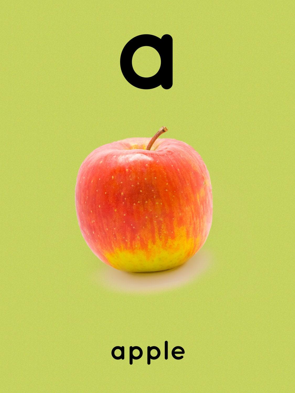 Nursery decal. Alphabet flash cards phonics ABC children | Etsy