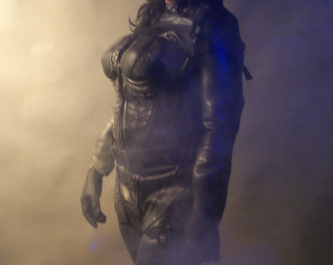 Catwoman Universal Armor Suit
