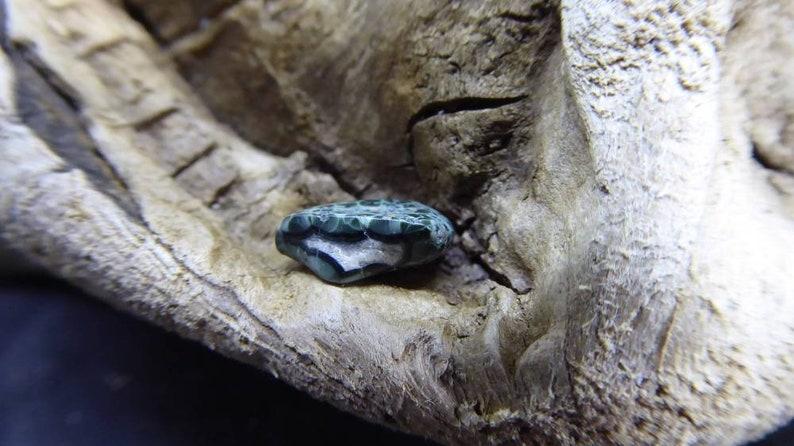 Tumbled .6 Gram Greenstone Chlorastrolite