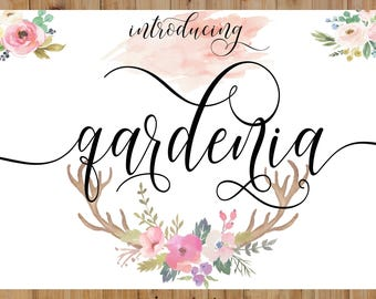 Calligraphy Swirly Digital Font Handwritten Download Swash Modern Bundle Invitations Wedding Christmas Fonts
