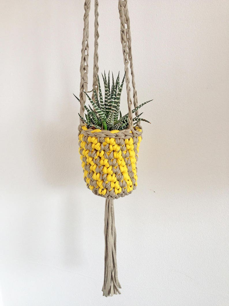Succulent plant holder small hanging planter indoor plant image 0