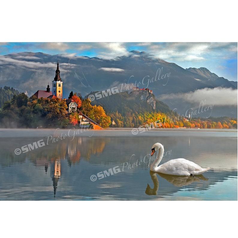 Lake Bled Slovenia Photo Church Picture Morning Fog image 0