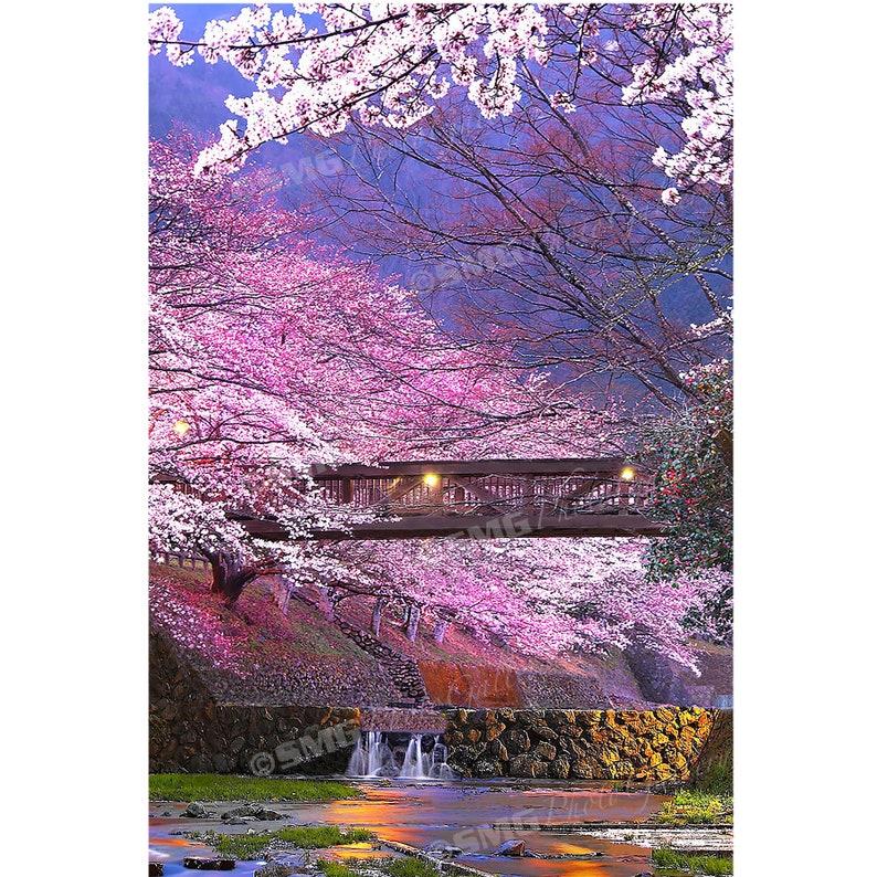 Kameoka Japan Cherry Blossoms Bridge Spring Home Decor image 0