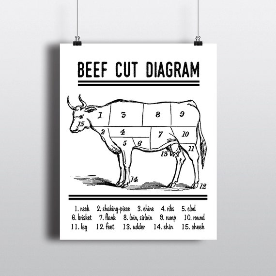 Beef Cut Diagram Print Instant Download Butcher Chart Cow Etsy