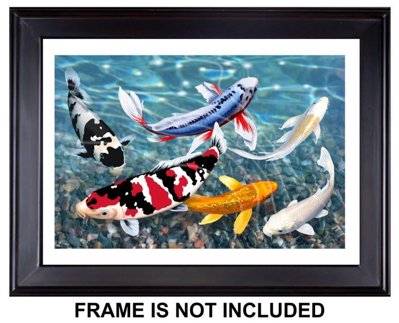 Twilight In Koi Pond >> Free Shipping 18 X 12 Koi Fish Giclee Print Of Etsy