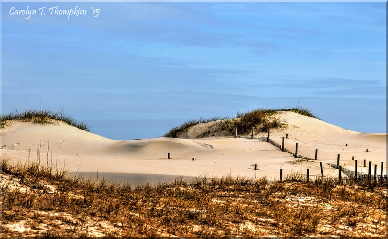 c35a0362375 Outer Banks Sand Dunes OBX Sea Oats North Carolina