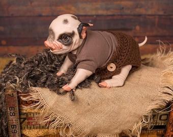Reborn Thistle Awake Piglet(s)