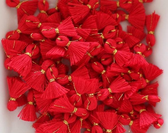 10pc red tassel charms mini, bracelet tassel, charm tassel, earrings tassel, tassels, tiny jewelry tassels, necklace tassel, crimson, N27