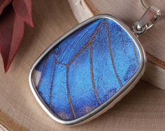 1.8 inch Blue Butterfly Wing Pendant in Sterling Silver - Butterfly Pendant, Real Butterfly Necklace, Wing Necklace, Butterfly Jewelry J1172