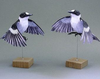 Template papercraft Flycatcher in flight.