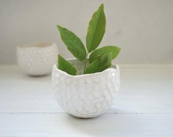 Handmade ceramic small planter, succulent, cactus planter, ceramic pot, white planter, handmade gift, housewarming gift, pottery plant pot