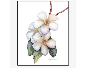 "Plumeria original watercolor painting on 300 lb cold press paper, 20"" x 24"" matted and backed, artist Kathy Baumann"